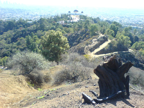 griffith park hope