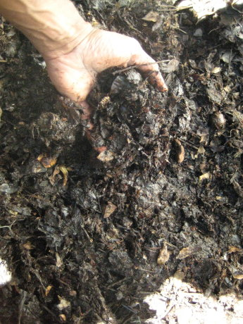 compost on the way