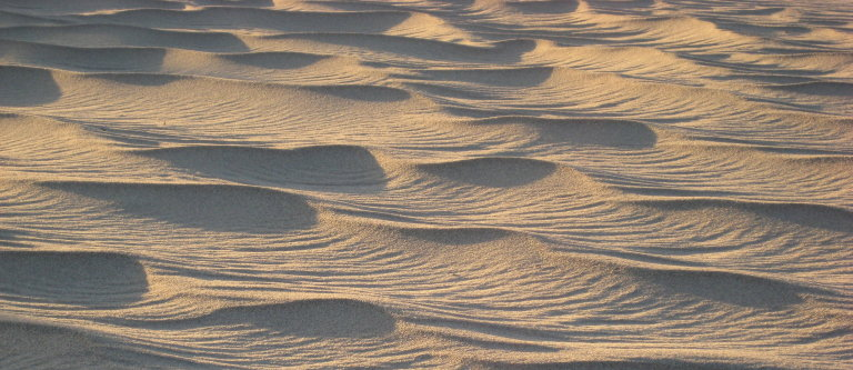 sand ripples from 2008 trip to Death Valley