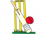 cricket_bat