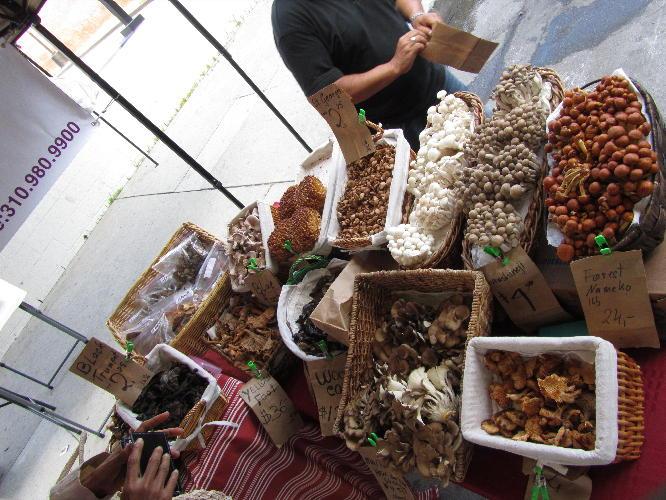 mushroom_stall_1