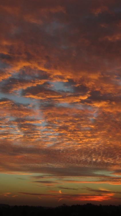 sunrise_26_01_2014